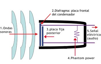 Fuente: Analfatécnicos y http://commons.wikimedia.org/wiki/File:Mic-dynamic.PNG